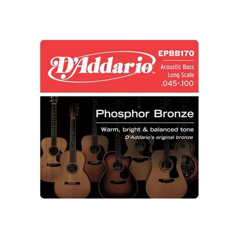 D\'Addario - Cordes Basse acoustique - PB45-100