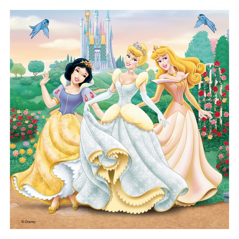 puzzles r verie avec les princesses disney 3 x 49 pi ces jouets activit s cr atives. Black Bedroom Furniture Sets. Home Design Ideas