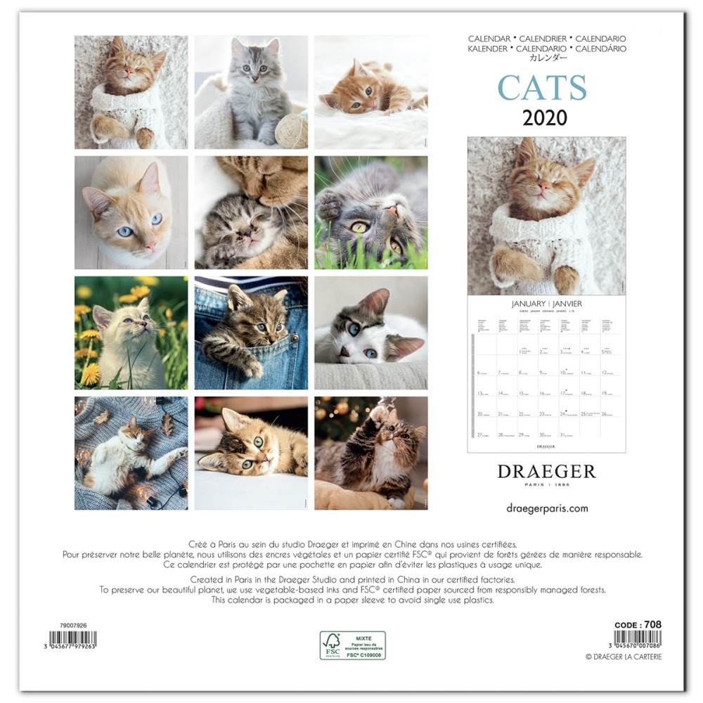 Calendrier Chat 2020.Calendrier 2020 Grand Best 16 Mois Chats 30 X 30 Cm