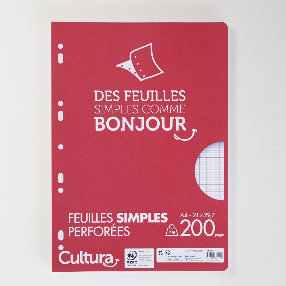 200 Pages Simples Perforées à Grands Carreaux A4 90gm²
