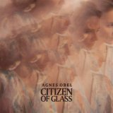 Citizen of Glass - Vinyle