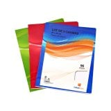 Lot de 3 cahiers 24x32cm 96 pages seyes 90 grammes