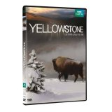 Coffret Yellowstone - DVD