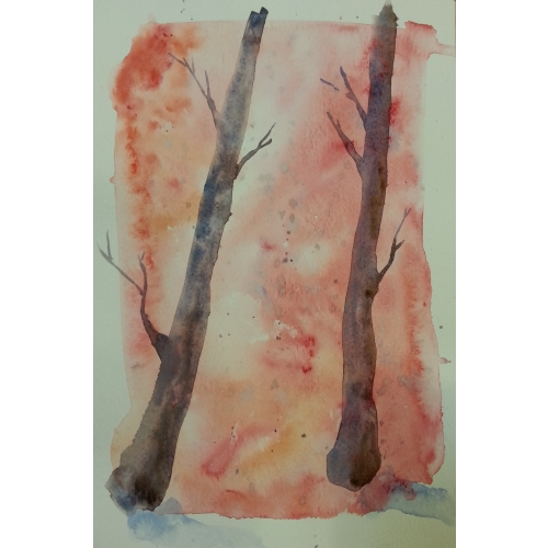 Aquarelle (initiation)