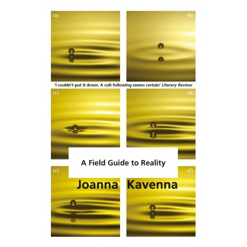 A Field Guide to Reality