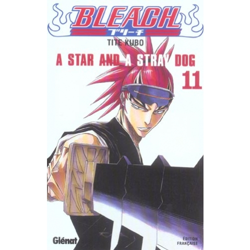 Bleach Tome 11 - A Star and a Stray Dog