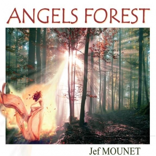 ANGELS FOREST