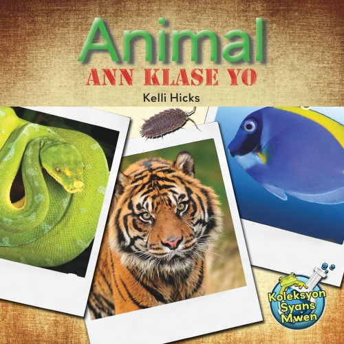 Animal Ann Klase Yo / Let's Classify Animals