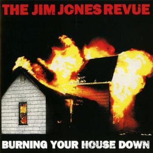 BURNING YOUR HOUSE DOWN