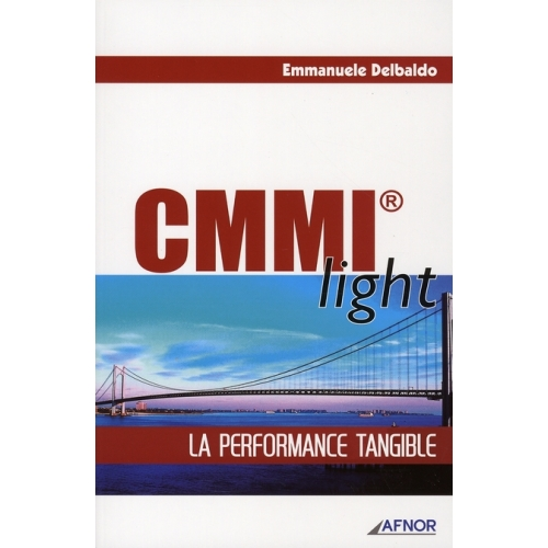 CMMI light - La performance tangible
