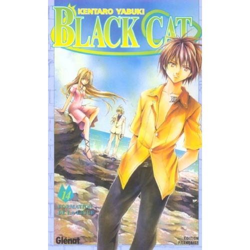 Black Cat Tome 14 - Formation de la ligue !
