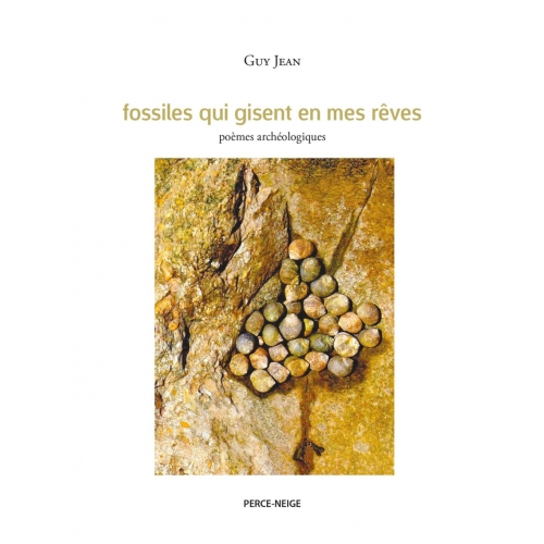 Fossiles qui gisent en mes rêves