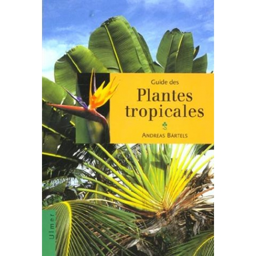 photo plantes tropicales livre