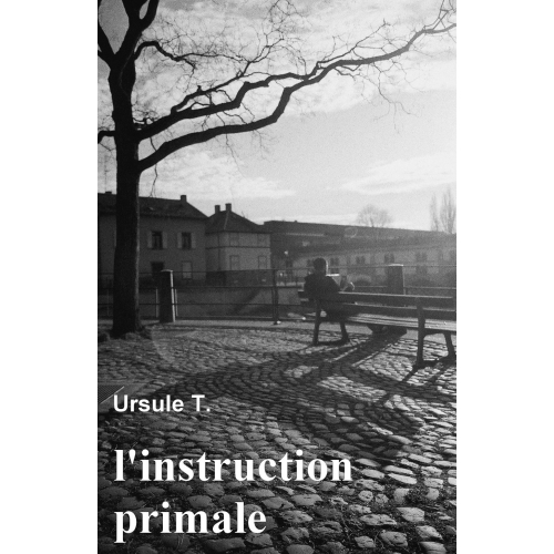 L'instruction primale