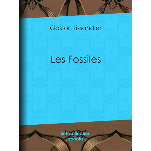 Les Fossiles