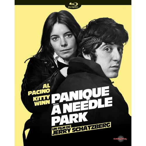 PANIQUE A NEEDLE PARK