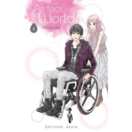 Perfect world Tome 6