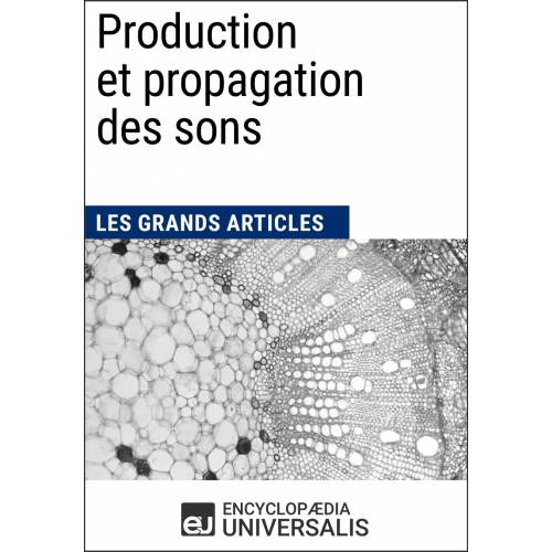 Production et propagation des sons