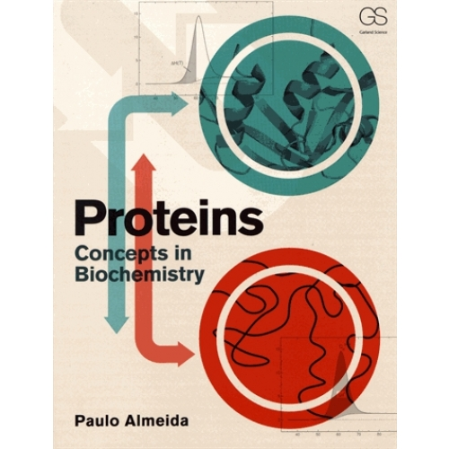 Proteins - Concepts in Biochemistry
