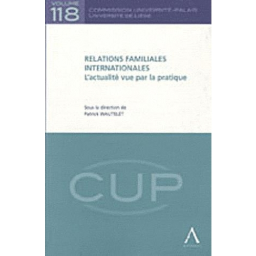 Relations familiales internationales - L'actualité vue par la pratique