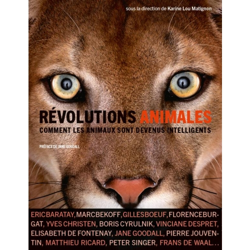 Révolutions animales - Comment les animaux sont devenus intelligents