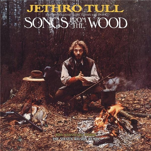 SONGS FROM THE WOOD - REMIX