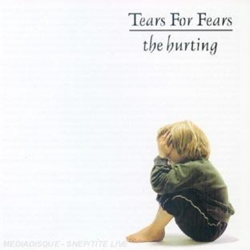 THE HURTING SONGS FROM THE BIG CHAIR THE SEEDS OF LOVE