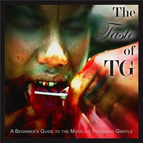 THE TASTE OF TG A BEGINNERS GUIDE