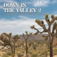 BEST OF DOWN IN THE VALLEY VOL 2