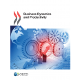 Business Dynamics and Productivity