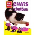 Chats et chatons
