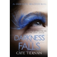 Darkness Falls (Immortal Beloved Book Two)