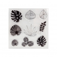 9 tampons transparents - feuilles -  Cultura Collection - Green