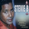 THE WORLD OF STEVIE B