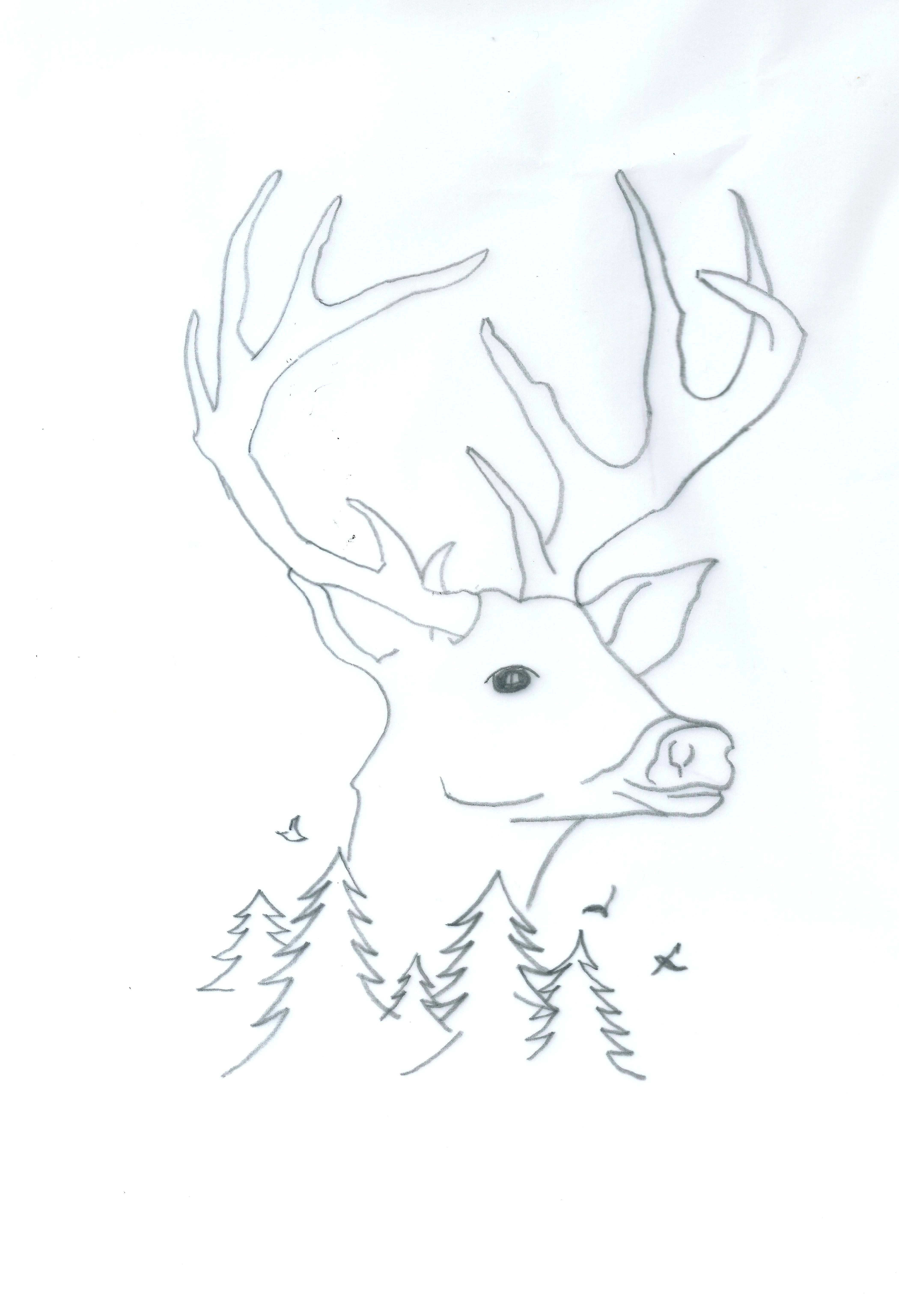 Wild Dessin Aux Cretacolor Noel Pas A Pas Creatifs Loisirs