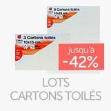 Lots de cartons toilés en promotion jusqu'à - 42%