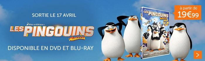 Les Pinguoins de Madagascar