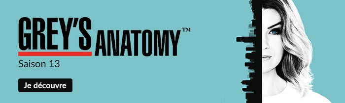 Grey's Anatomy saison 13