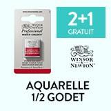Aquarelle demi godet Winsor & Newton