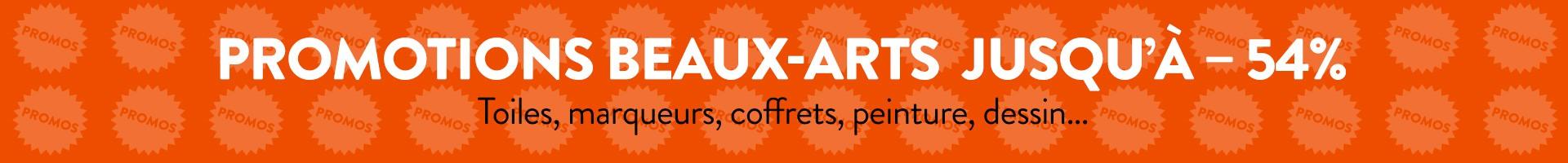 Promotions en Beaux-Arts