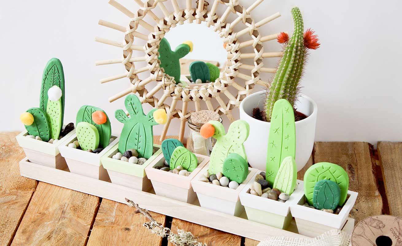 Jardinière de cactus