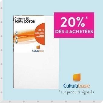 Promotion Toiles 3D Cultura
