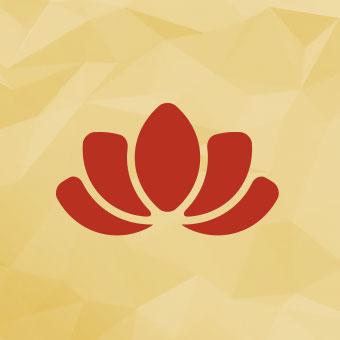 Les lecteurs zen