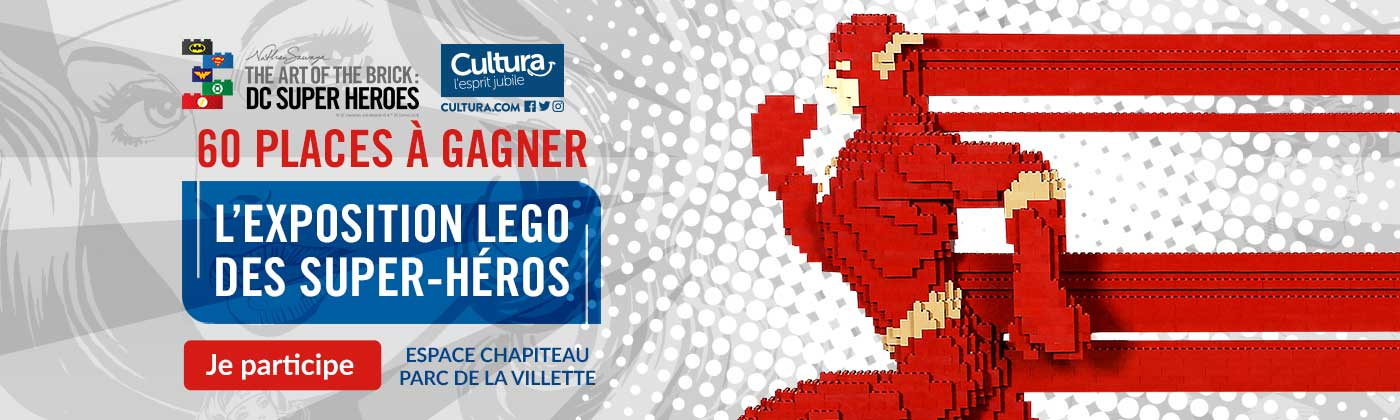 Concours The Art of The Brick