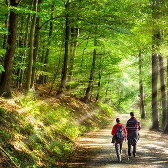Vivez Nature et Bien Être