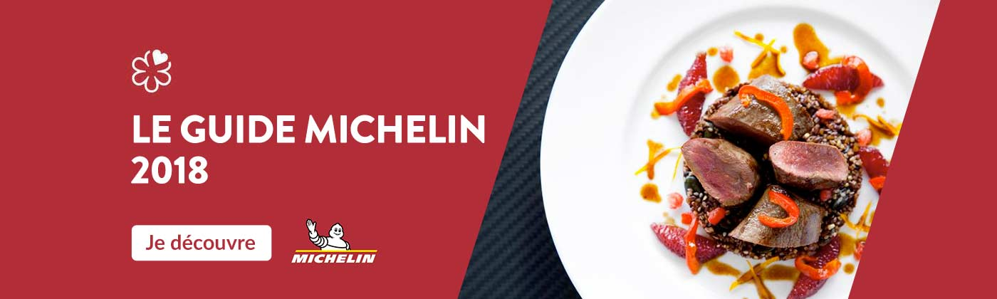 Le guide Michelin 2018
