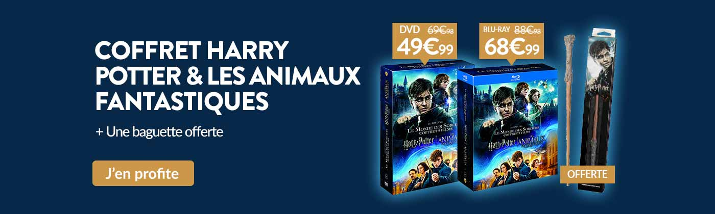 Bon plan coffret baguette Harry Potter